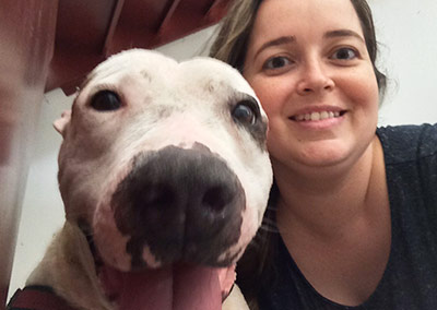 cachorro e veterinária