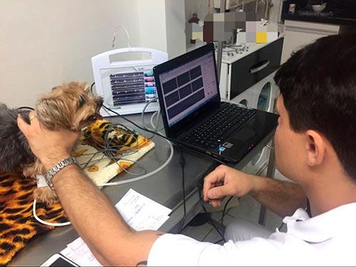 exames-veterinários