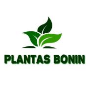 Plantas Bonin