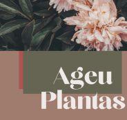 Ageu Plantas