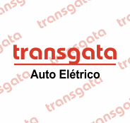 Transgata Auto Elétrica