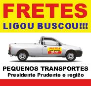 Fretes Ligou Buscou