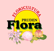 Pruden Flora Floricultura